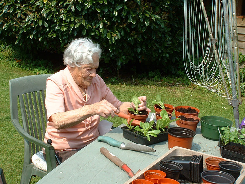 Activities at Devon Care Home
