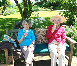 Ice Cream in The Garden at Tracey house